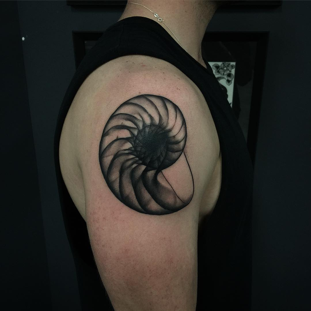 Nautilus Shell Tattoo
