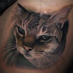 Realistic Cat Head Tattoo