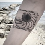 X-Ray Nautilus Shell Tattoo