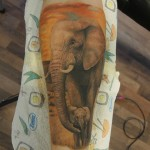 African Elephant Tattoo