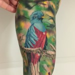 Realistic Bird Tattoo