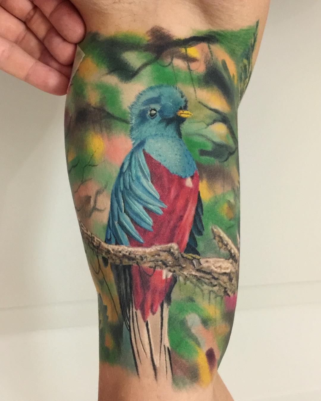 Realistic bird tattoo best tattoo ideas gallery for Realistic bird tattoo
