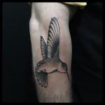 Tattoo of Hummingbird