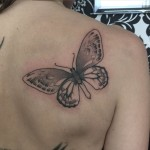 cool butterfly on the shoulder blade - black and grey tattoo