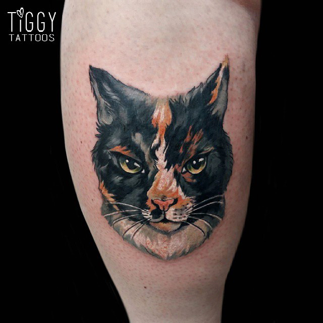 watercolor realistic tattoo of a cat face