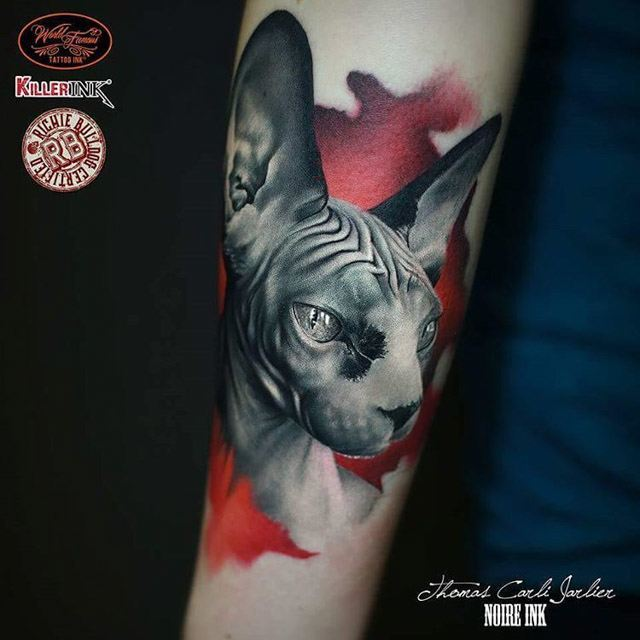 arm tattoo cat sphynx