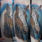 Realistic Horse Head Tattoo
