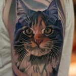 Cat Tattoo Portrait