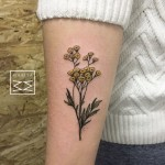 Tansies Flowers Tattoo on Arm