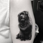 Black Dog Tattoo