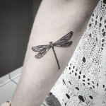 Dotwork Dragonfly Tattoo on Forearm