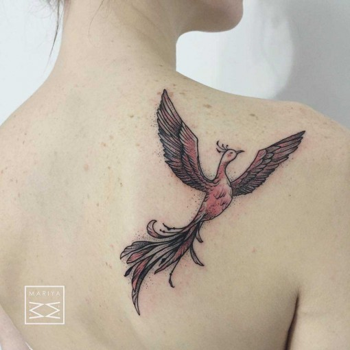 phoenix tattoo on shoulder blade