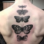 Butterfly Tattoo Down Spine by krihitkasoia