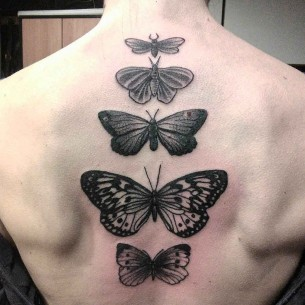 Butterfly Tattoo Down Spine