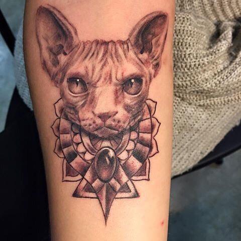 Tattoo Sphynx Cat by @inkpacker