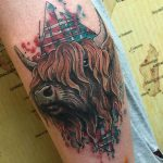Scottish Tattoo Buffalo