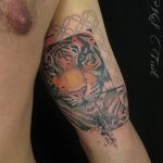 Tiger Tattoo Arm