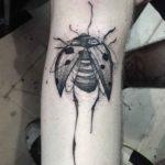 sketchy graphic tattoo ladybug