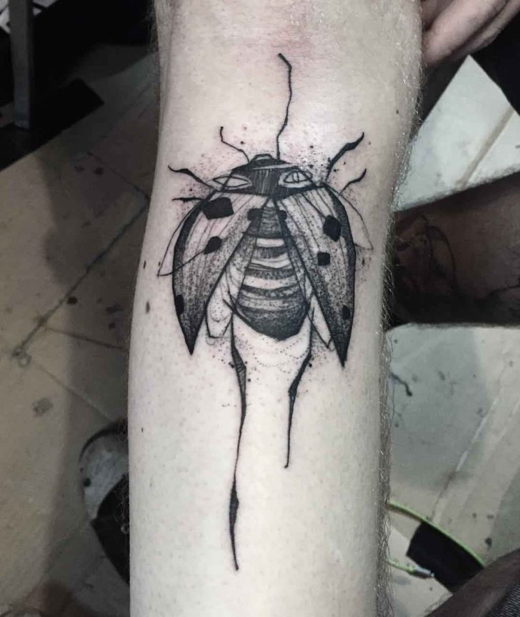 sketchy graphic tattoo ladybug