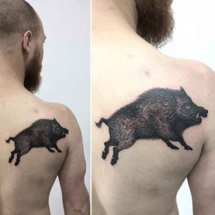 Boar Tattoo on Shoulder Blade