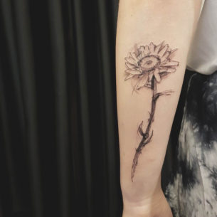 Daisy Flower Tattoo on Forearm