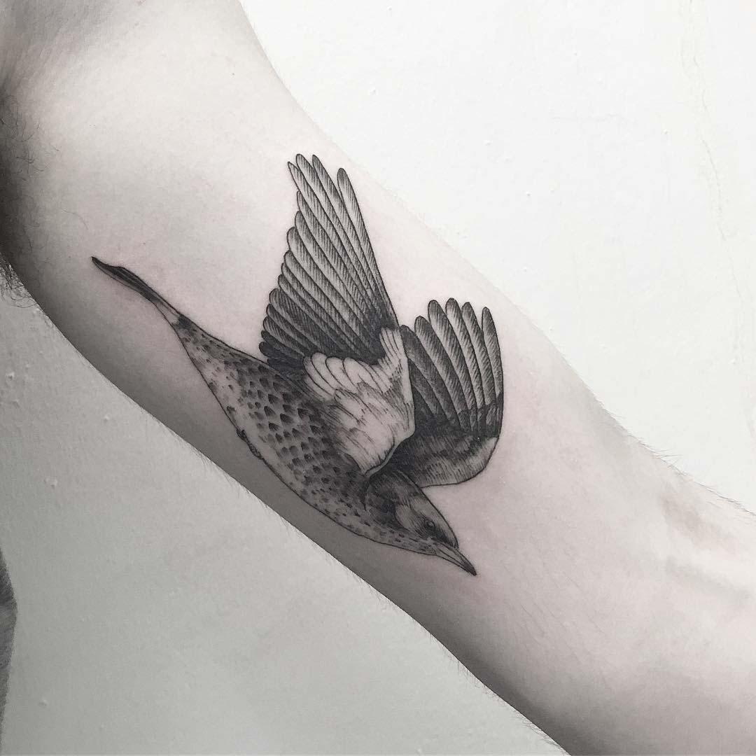 arm tattoo flying bird