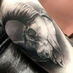Graphic Tattoo Ram Skull