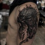 falcon tattoo on shoulder bird head