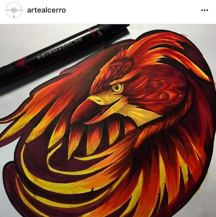 phoenix design by Chris Alcerro
