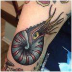 Nautilus Shell Tattoo on Arm