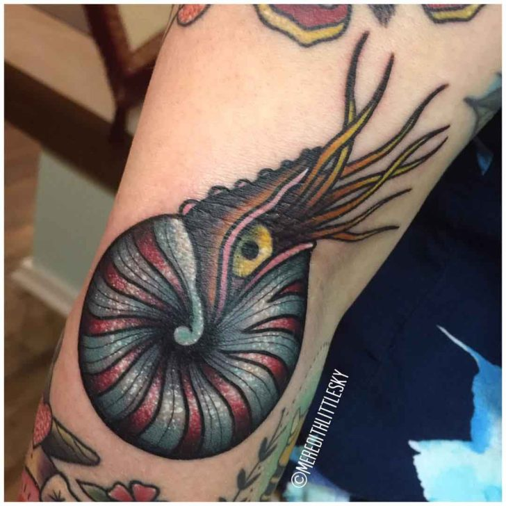 shell tattoo nautilus