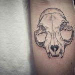 Arm Tattoo Cat Skull