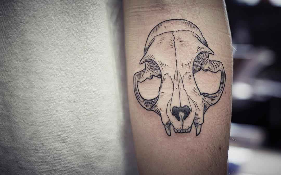 cat skull tattoo on arm