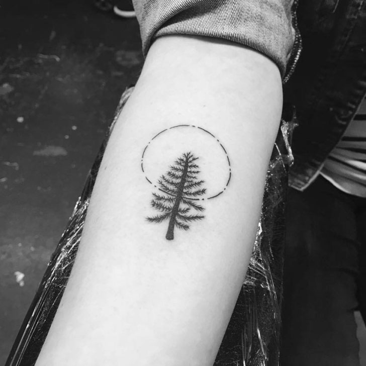 Circle Pine Tree Tattoo