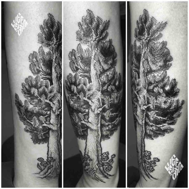 Etching Pine Tree Tattoo