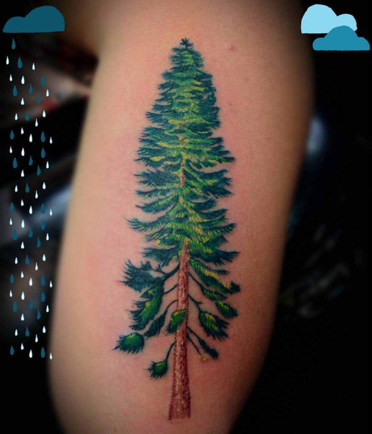 Evergreen Tattoo