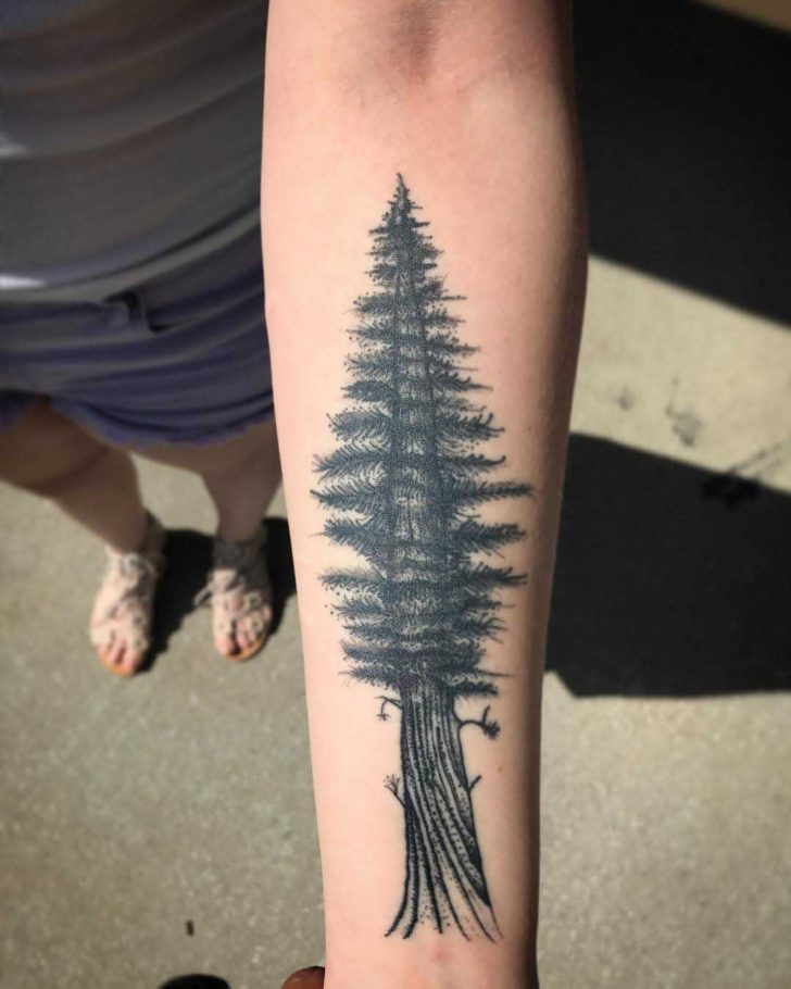 Forearm Tattoo Grey Pine