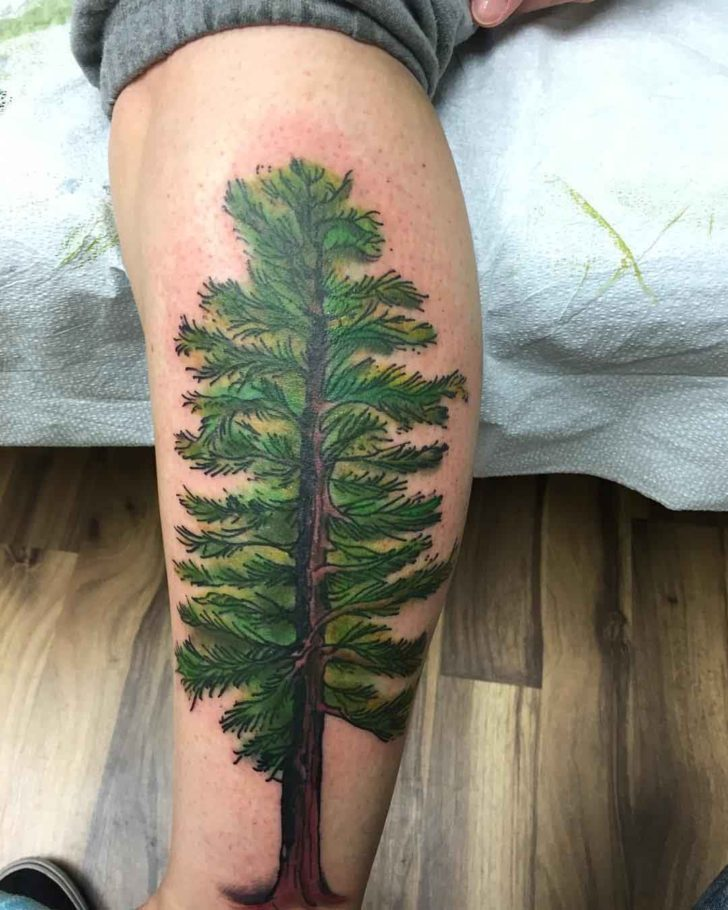 Green Pine Tattoo on Calf