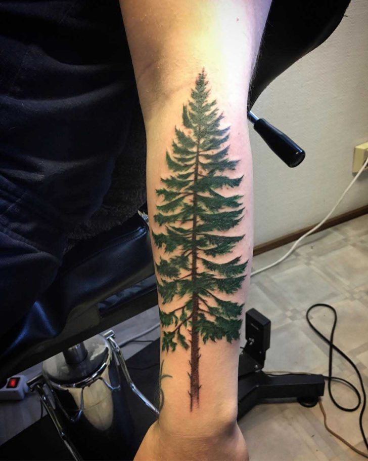 Green Pine Tree Tattoo