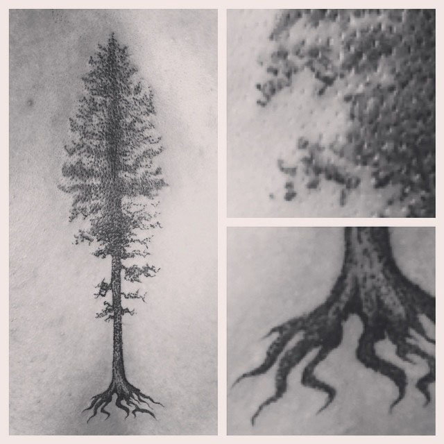 Precise Pine Tree Tattoo