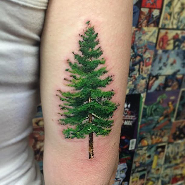Realistic Green Pine Tree Tattoo
