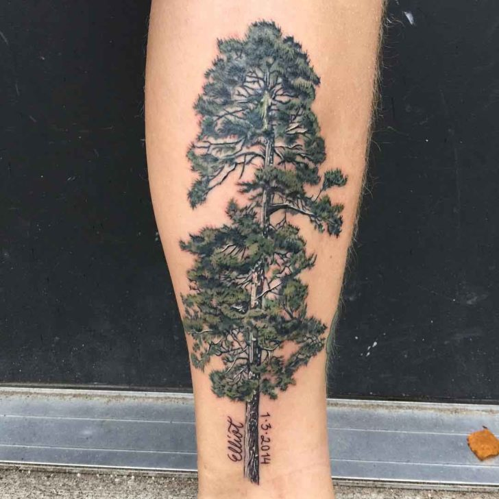 Windy Pine Tree Tattoo