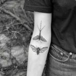 Mayfly and Cicada Tattoos