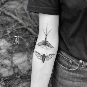 Mayfly and Cicada Tattoos