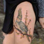 Cockatiel Tattoo Parrot