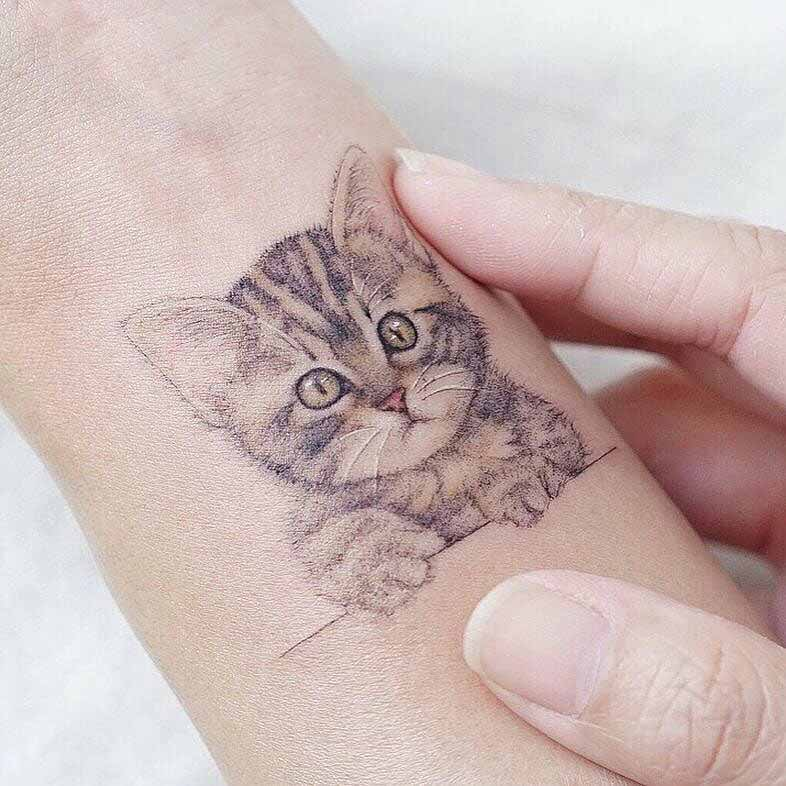 cute cat trattoo