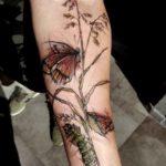 Catterpillar And Butterfly Tattoo