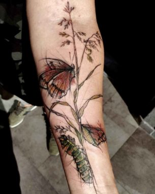 Catterpillar And Butterfly Tattoo