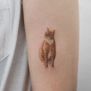 Red Cat Tattoo